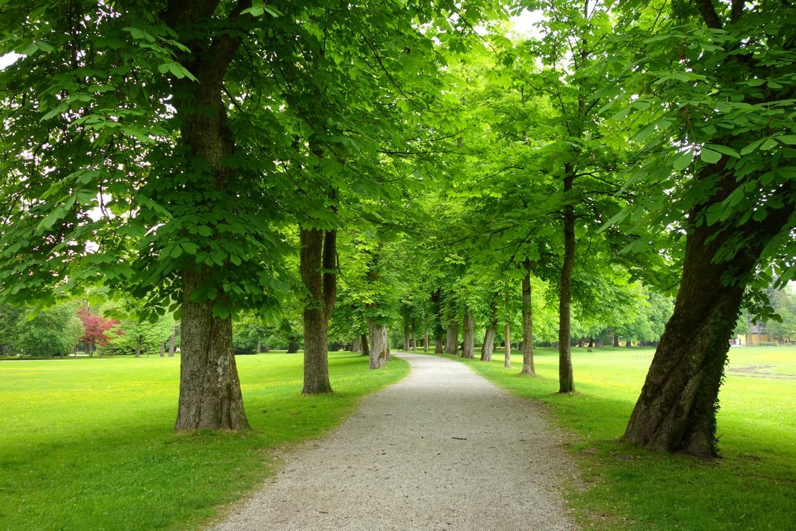 Парк, Зальцбург, Австрия