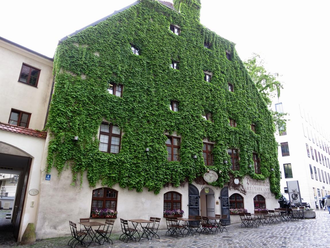 Дом увитый плющом. Мюнхен, Германия