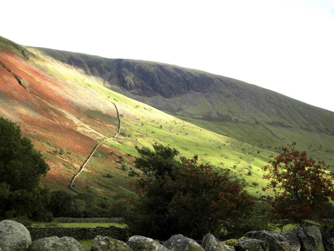 Здесь берут начало Чевиотские холмы, отделяющие страну от Шотландии.