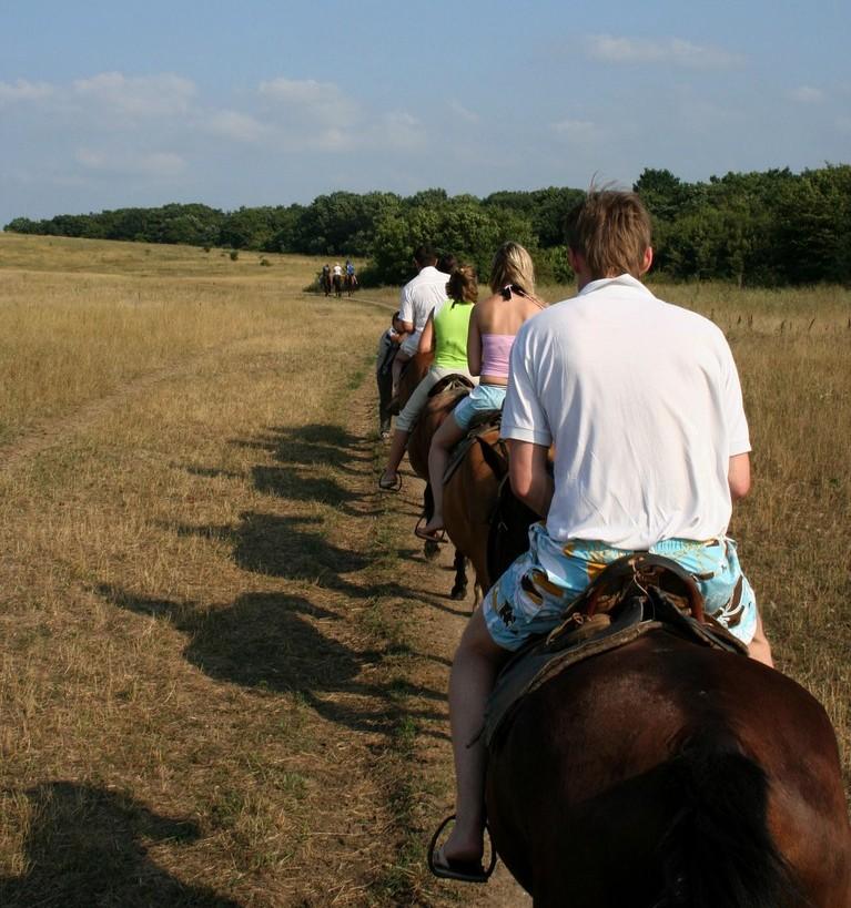Личный транспорт-лошадь (Анапа)