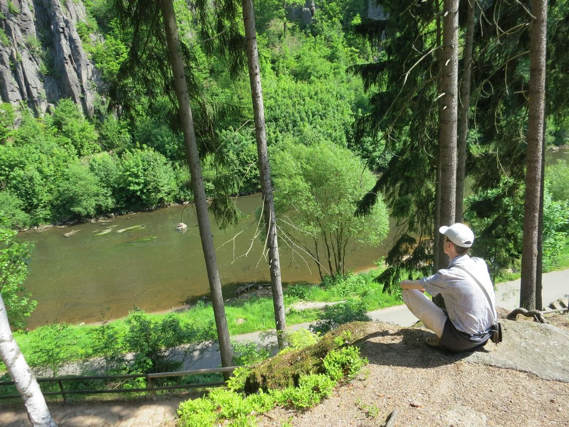 Лес напротив Сватошских скал