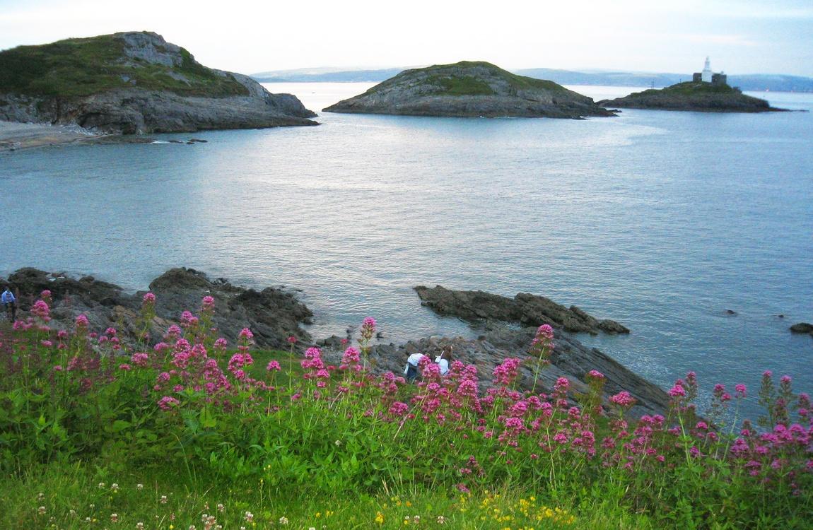 Ирландское море Уэльс (Великобритания).