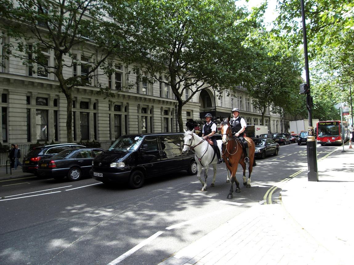 Конная полиция Лондона