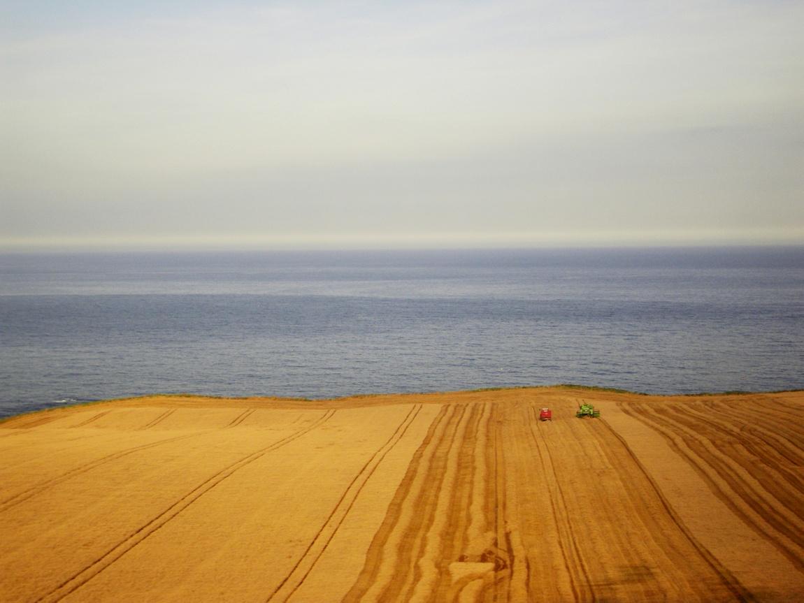Море и поля. Вид из поезда Эдинбург-Лондон