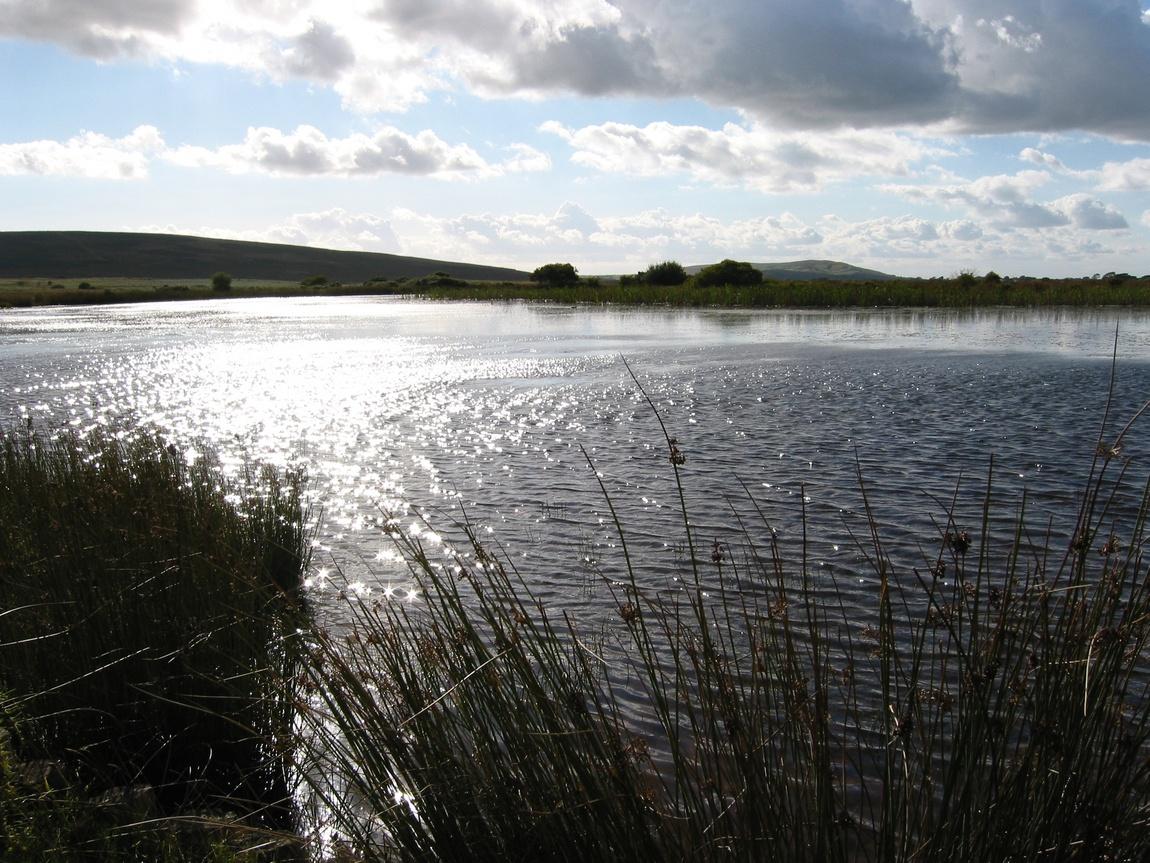 Озера Broad Pool Англия