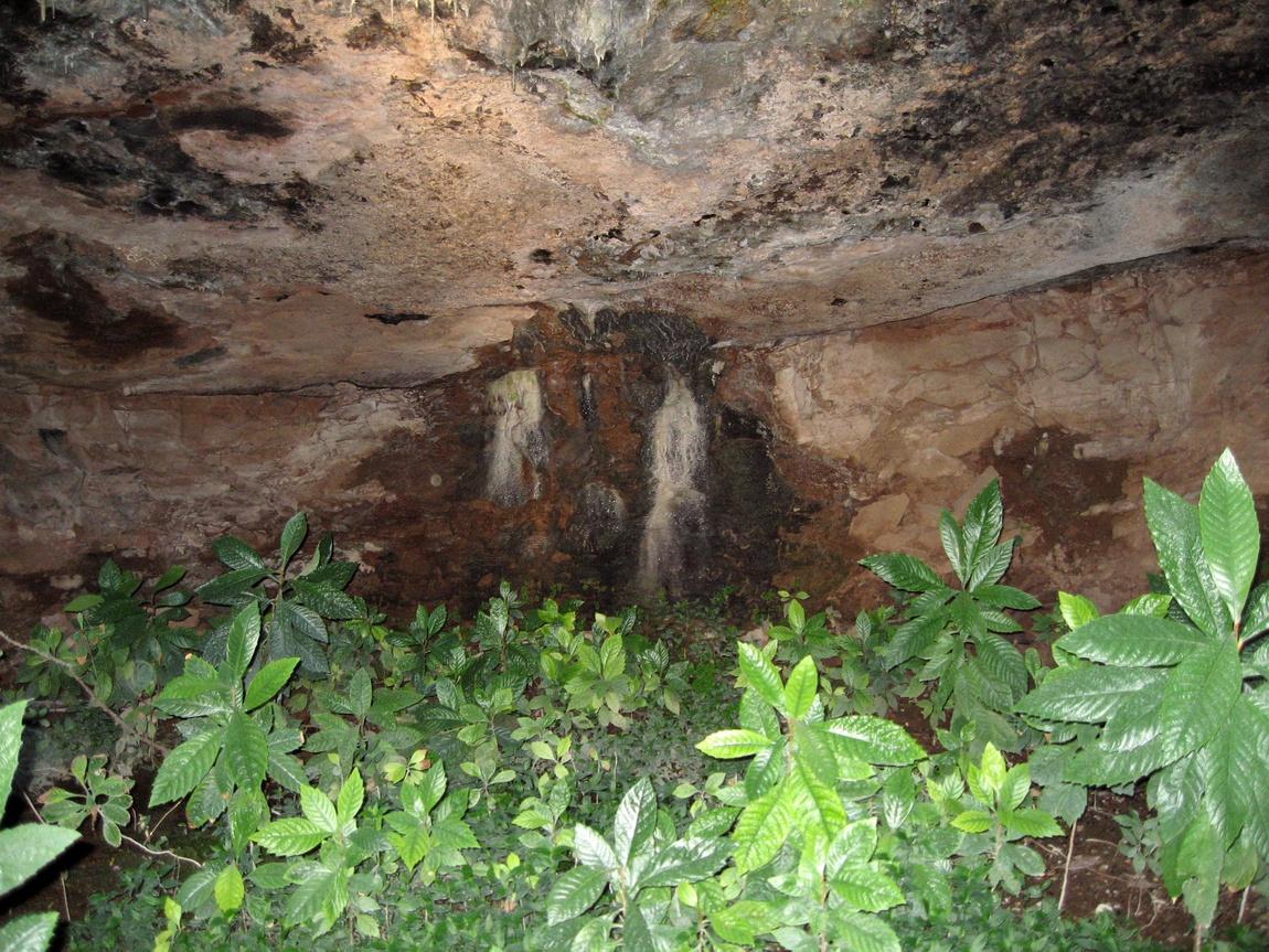 Сад в пещере Святого Луки пещеры Мегаспилеон в Греции
