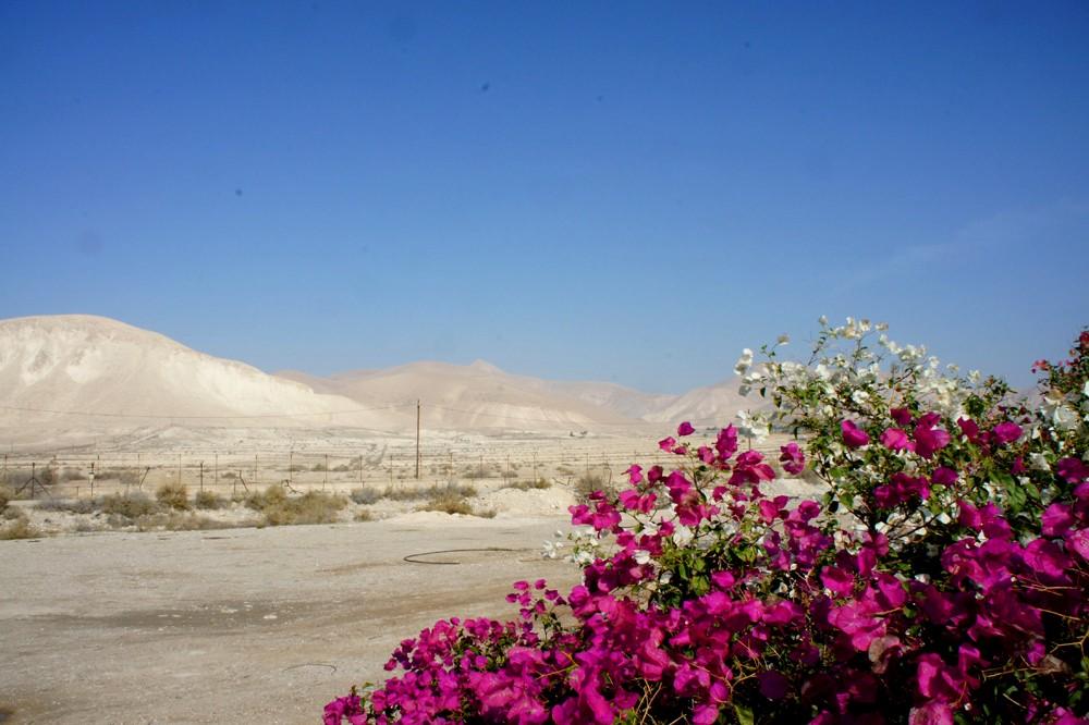 Пески Израиля
