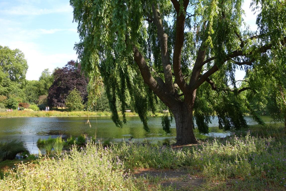 Сент-Джеймсский парк, Лондон
