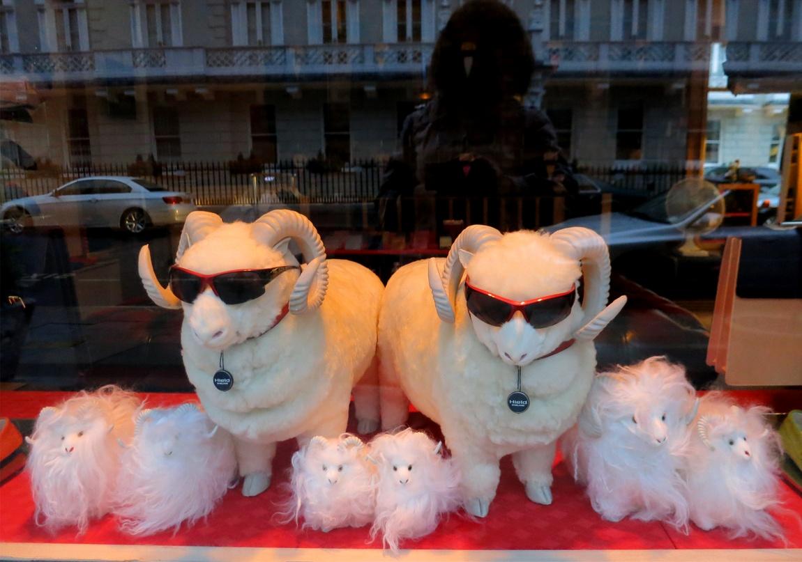 «Элитные и дорогие барашки». Лондон (Англия)