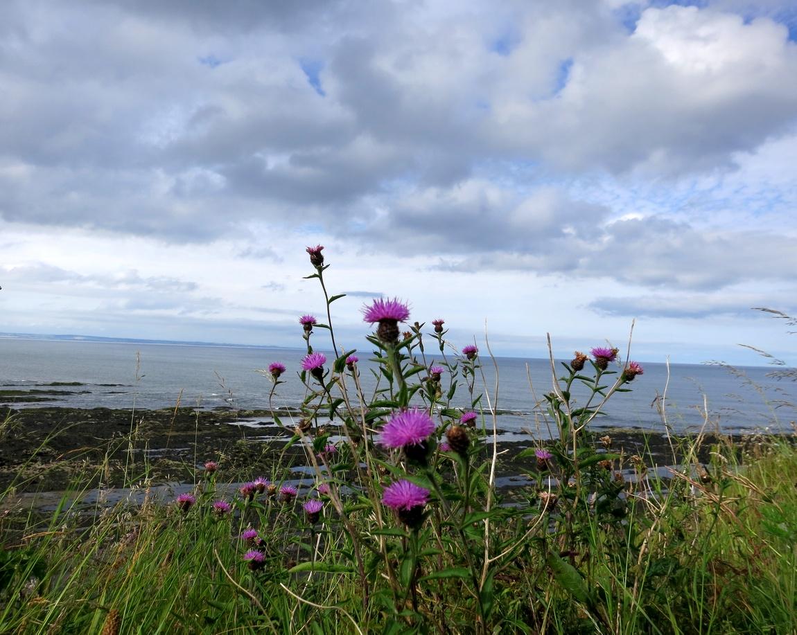 Море - Шотландия