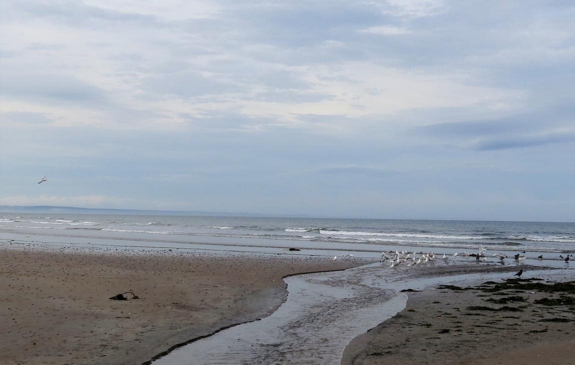 Сент-Эндрюс в Шотландии, море