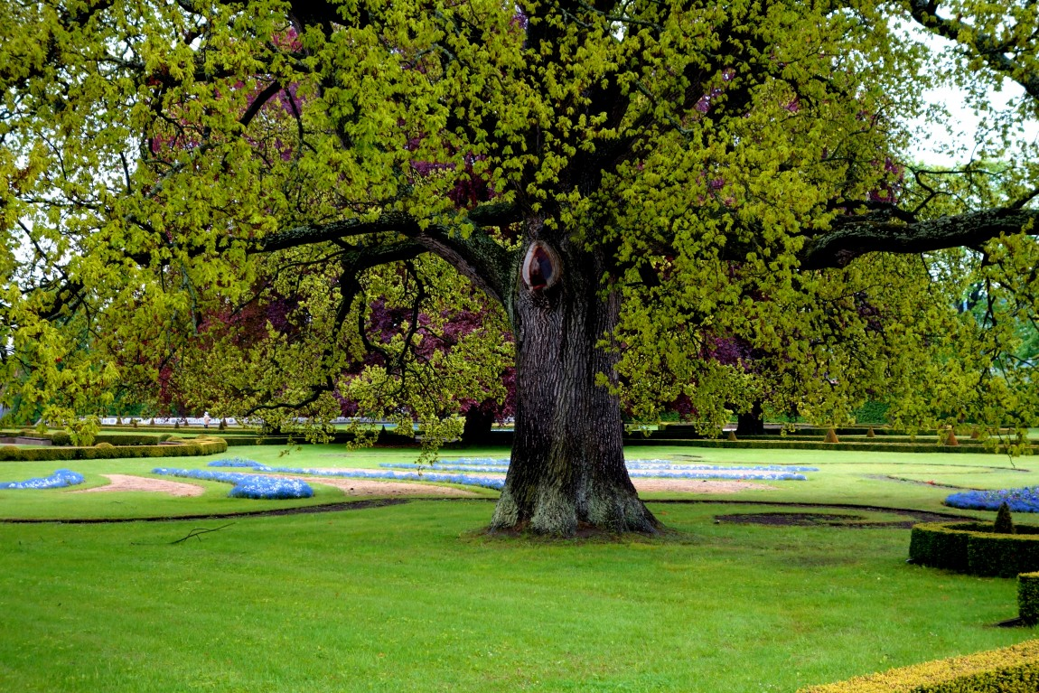 Чехия - парк у Крумлова