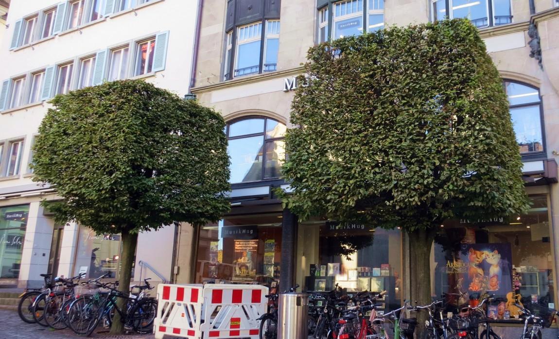 Кубические кроны деревьев (Швейцария)