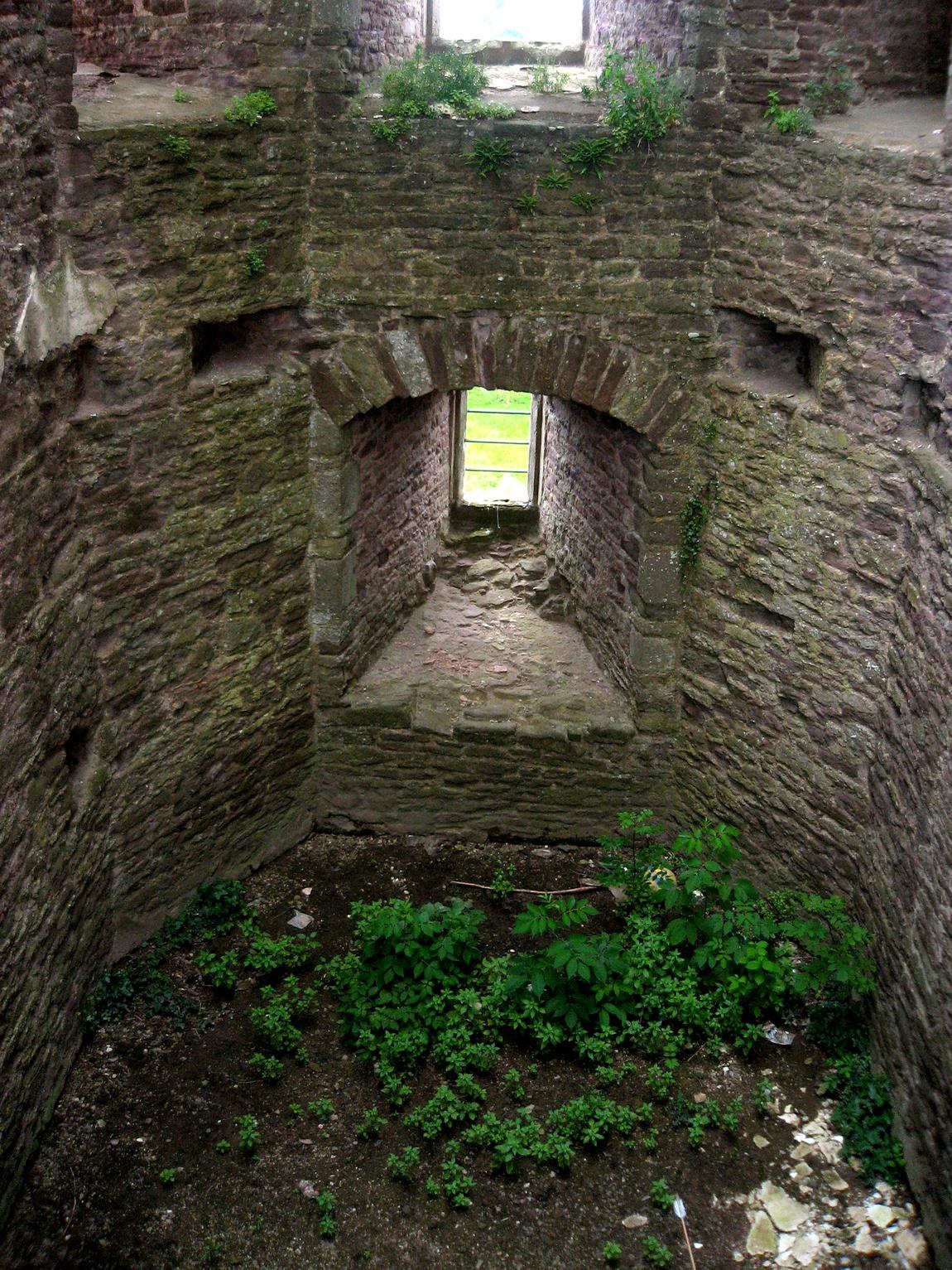 Замок Raglan Castle