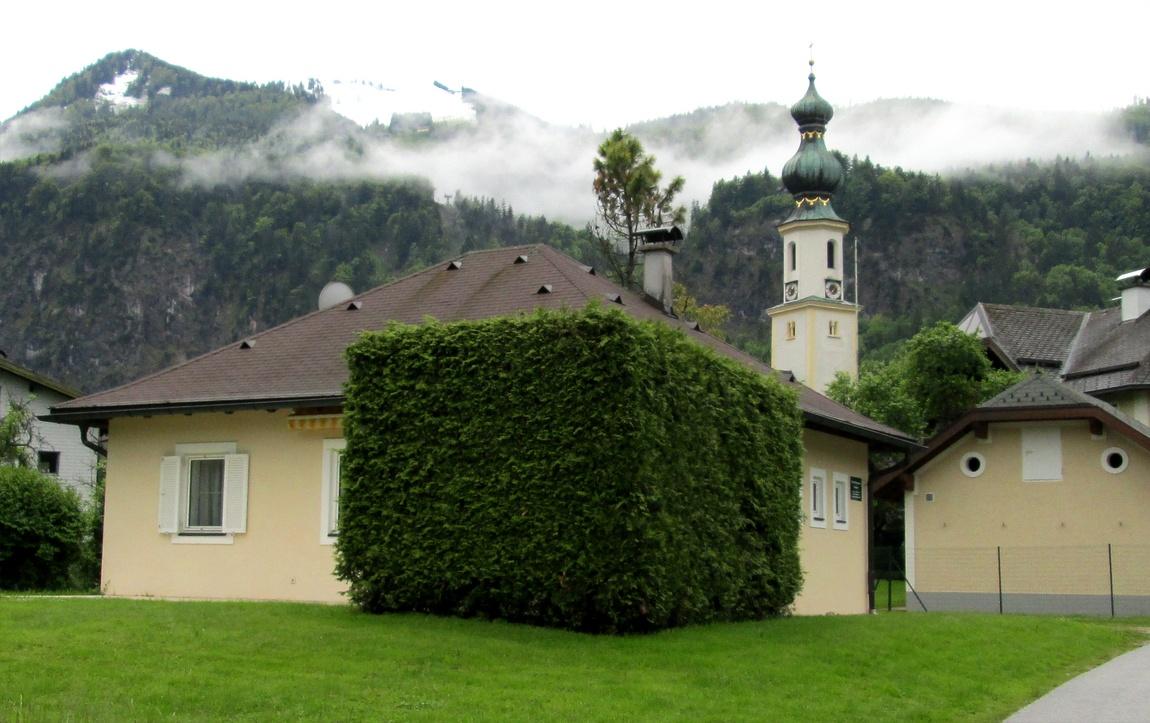 Кубическая форма дерева (Австрия)