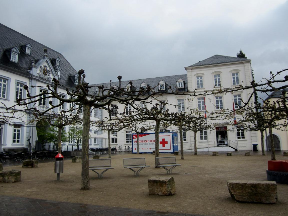 Кроны деревьев в Германии