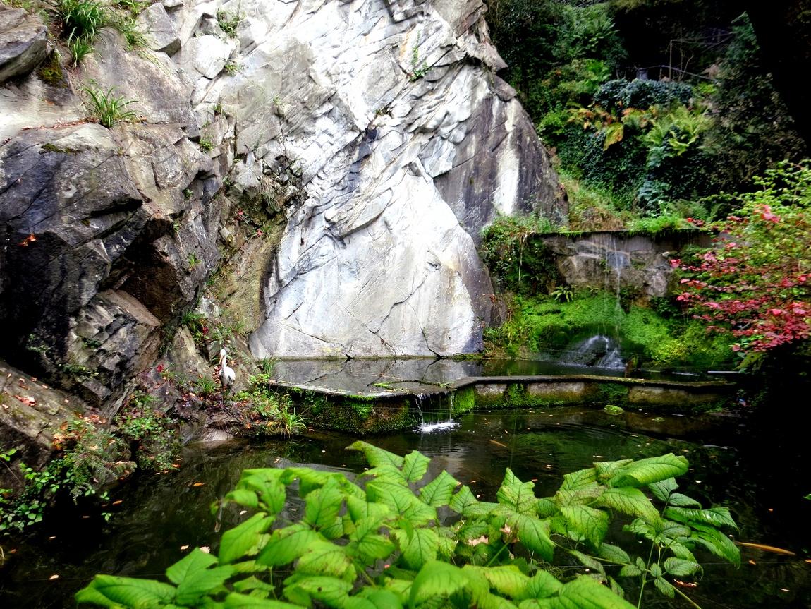 Люцерн - прудик в Ледниковом саду