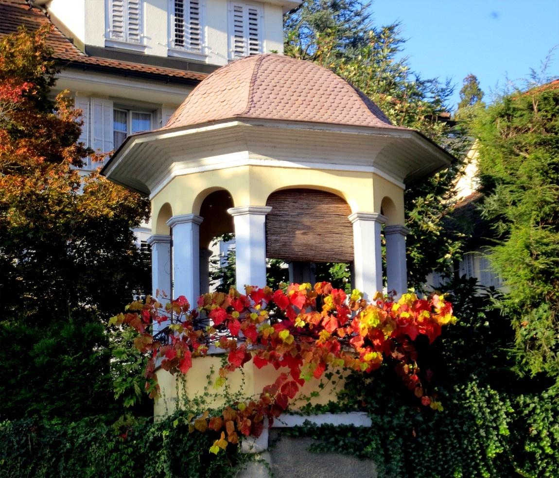 Беседка в золотой листве осени (Швейцария)