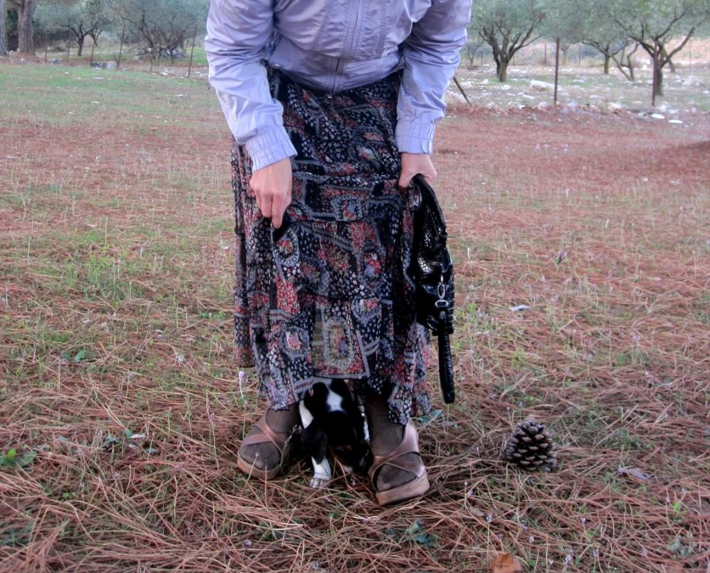 Бездомный щенок в Греции.