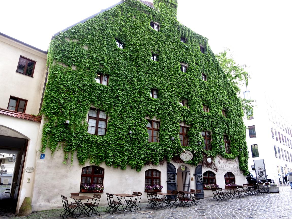 стена зелёная