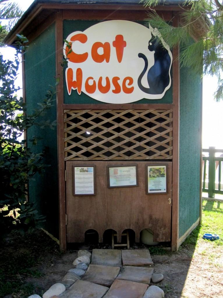 Кошачий дом в Турции