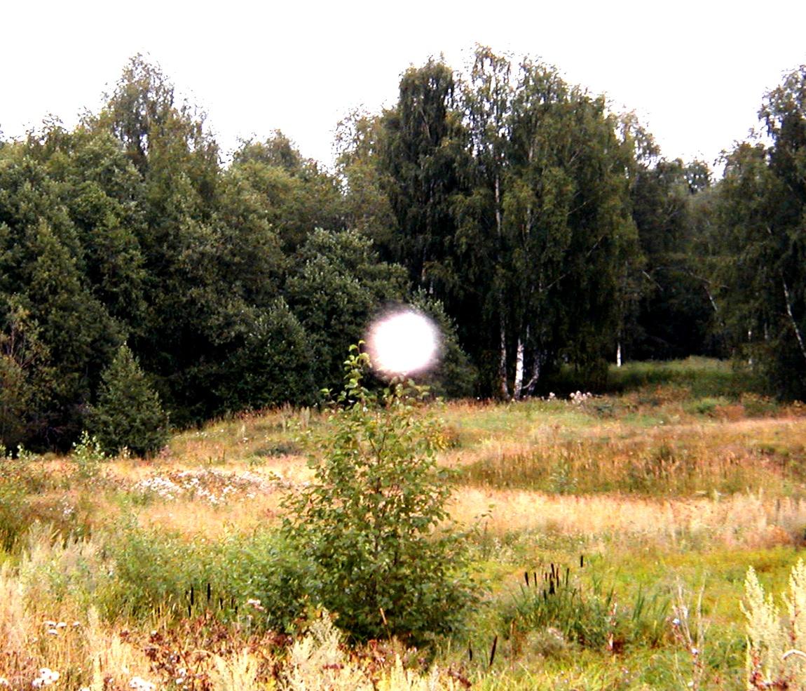 Светящийся шар в поле (Россия)
