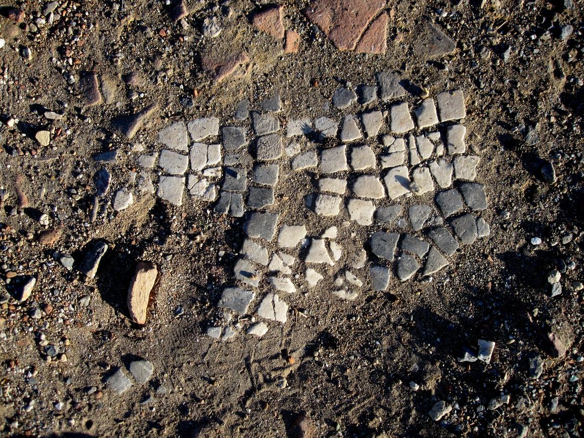 Руины в Сиде - мозаика