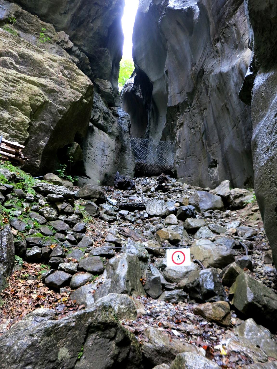 Мейринген-Каньон (gorges de l'Aare)