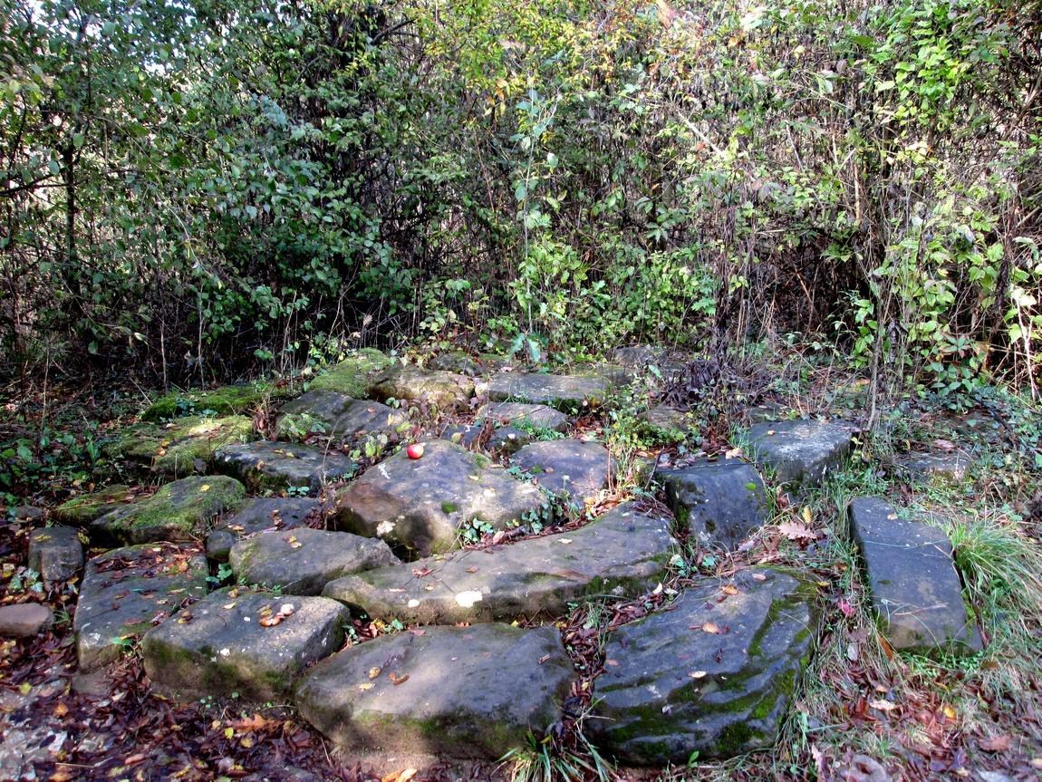 Камни Ора