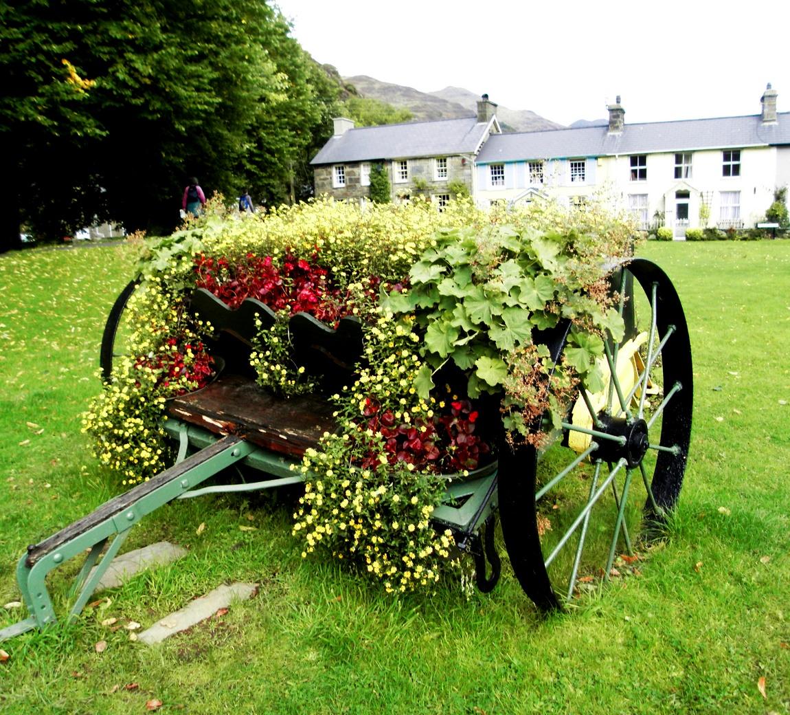 Уэльс - цветы