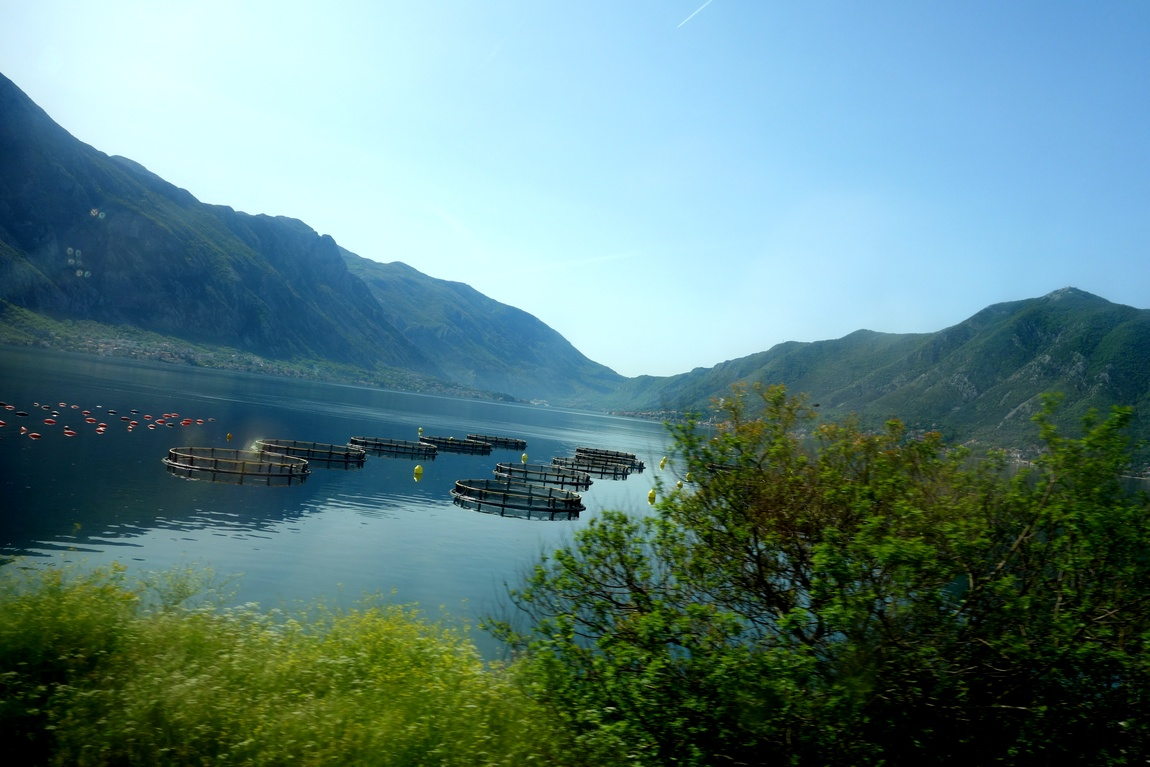 Боко-Которский залив в Черногории