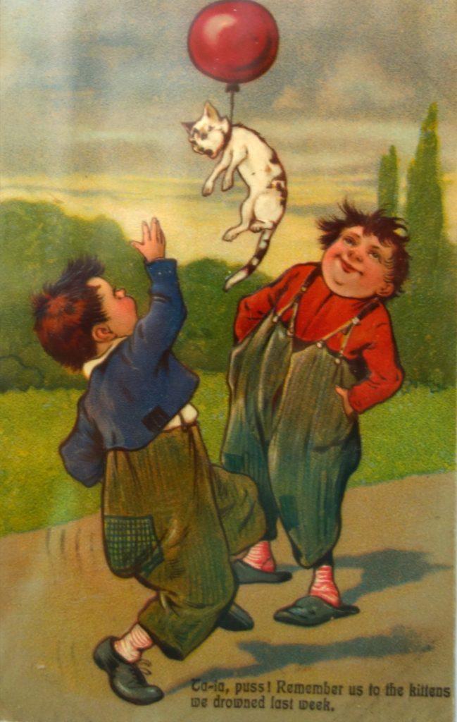 кошка (старинные открытки) Черногория