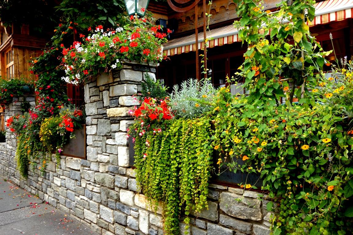 Цветники в Австрии