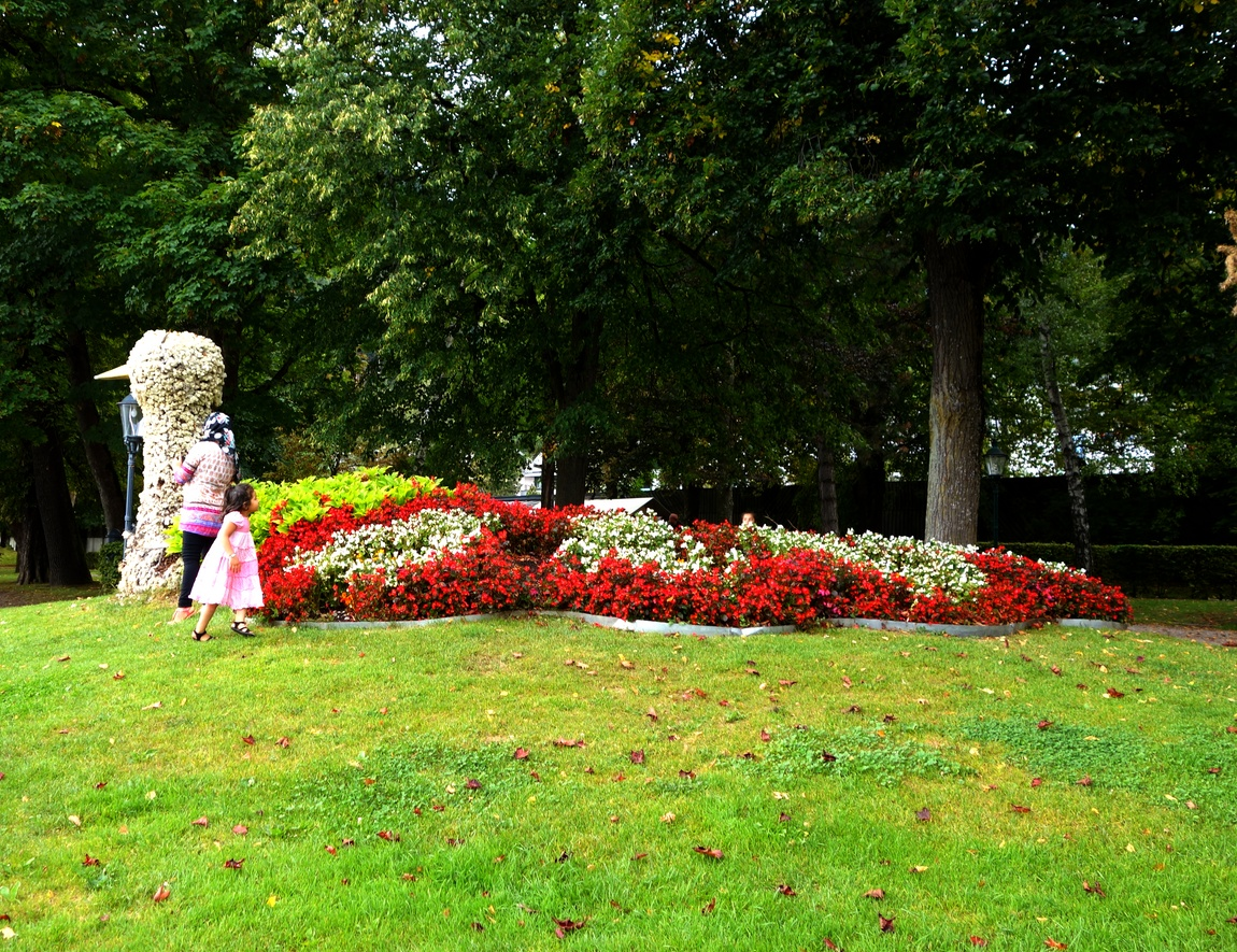Цветочная клумба в виде уточки в Австрии