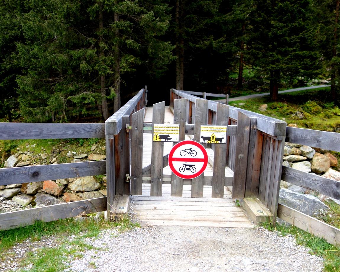 Мостик запрещённый коровам в Австрии