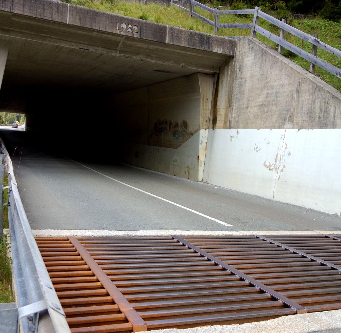 Решётка перед тоннелем в Австрии