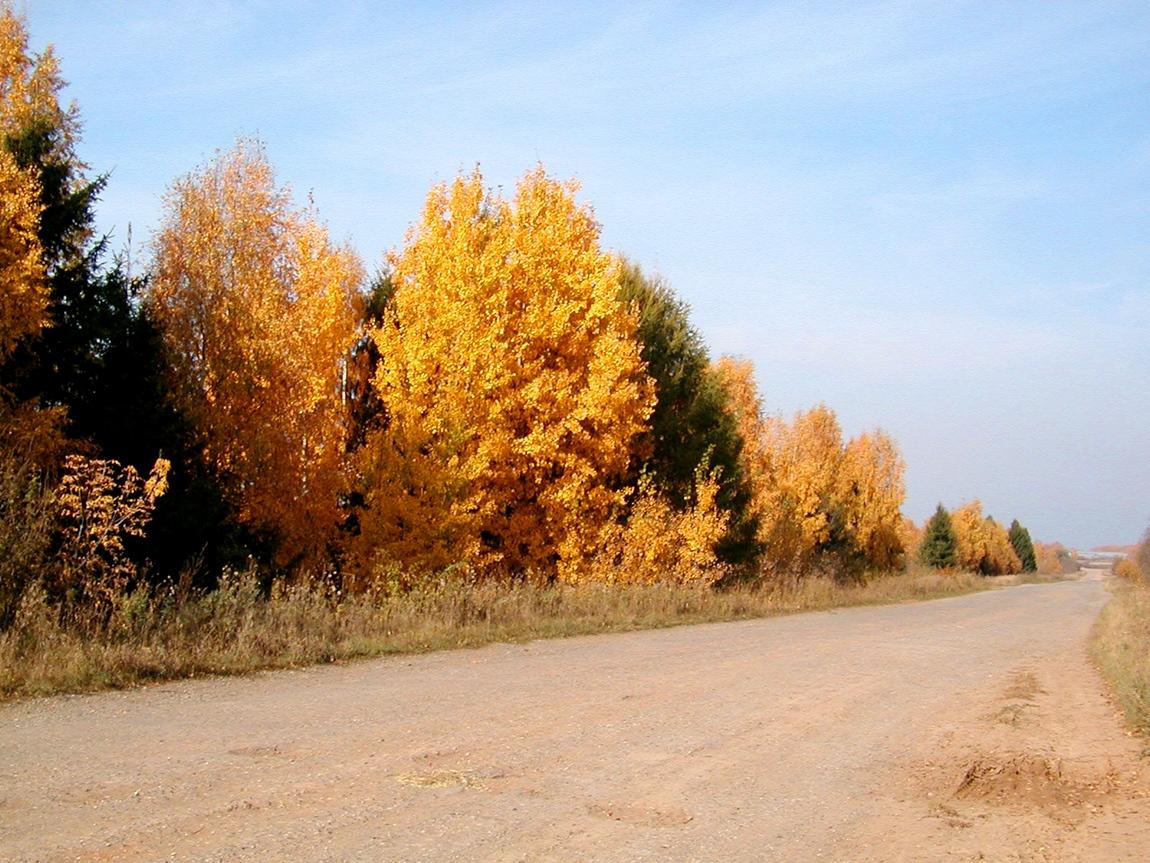 Дорога от Черепаново до Щёкотово в Яранском районе
