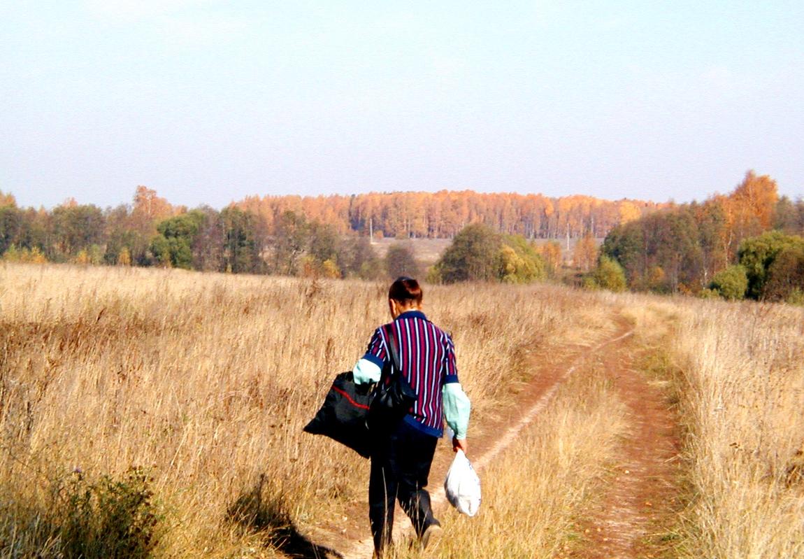Деревня Щокотово в Яранском р. Зыковской волости