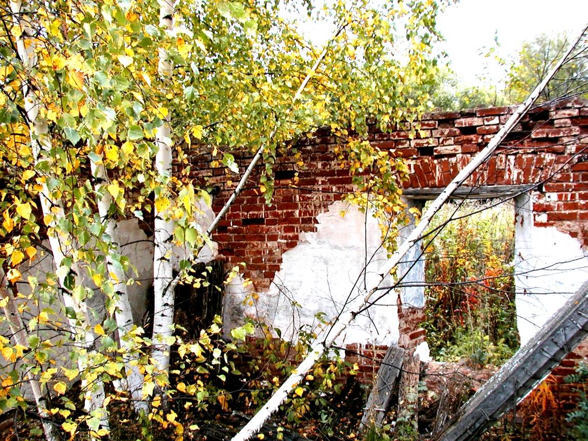 Заброшенный дом в Щёкотово
