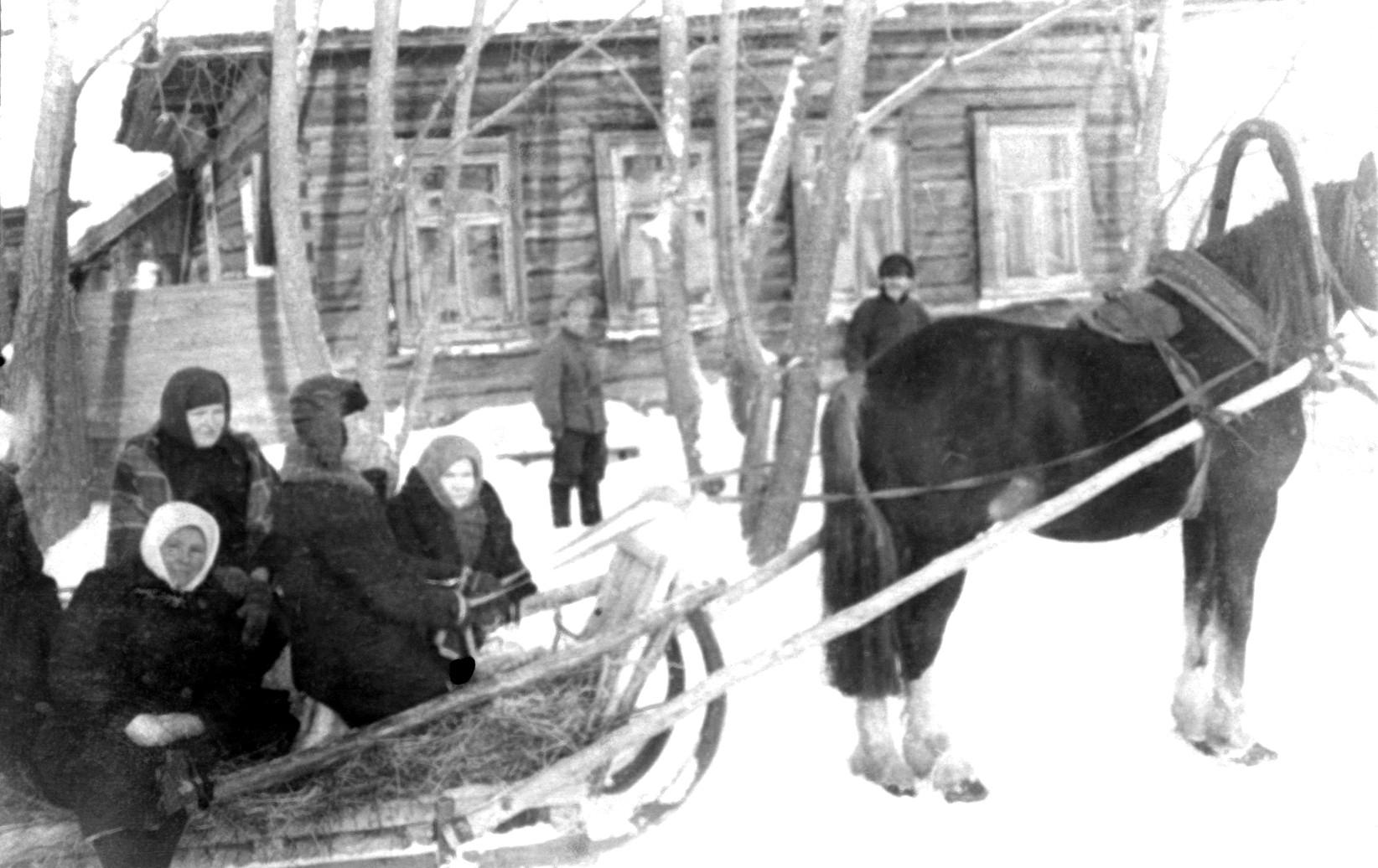 Зимой на санях -Савичи