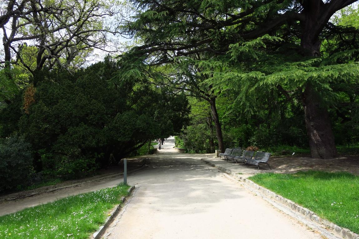 Воронцовский парк (Алупка)
