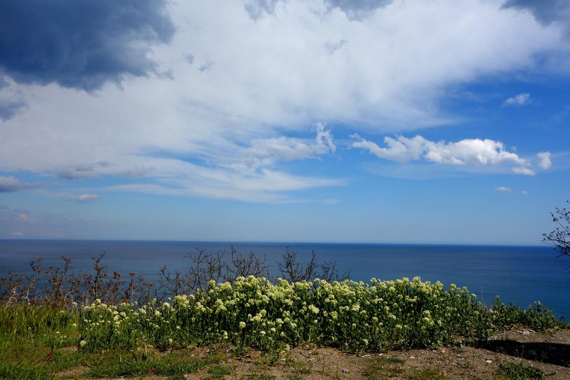 Дикий пляж на Чёрном море
