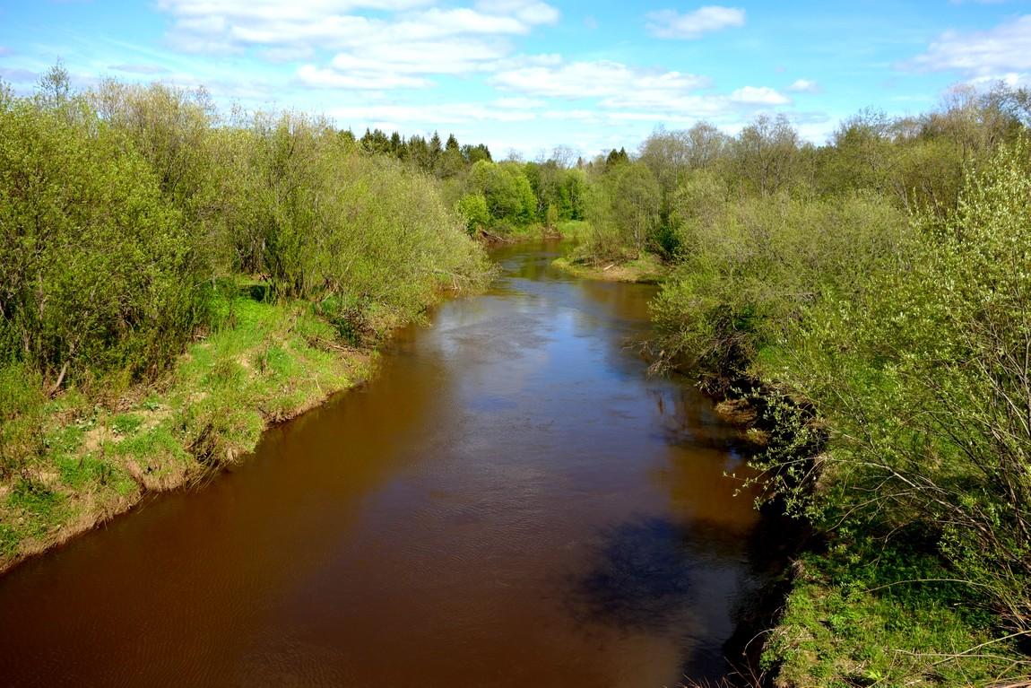 Река Медянка