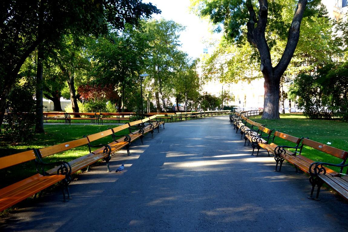 Вена и парк