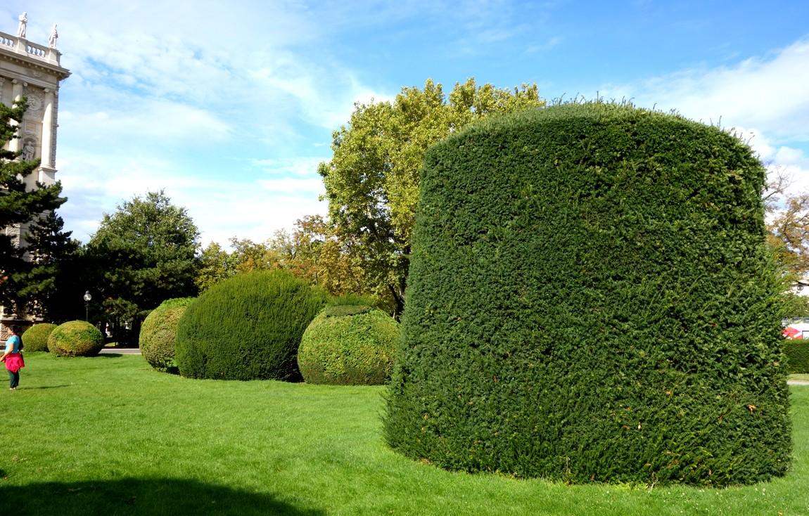 Цилиндрические формы деревьев и кустов
