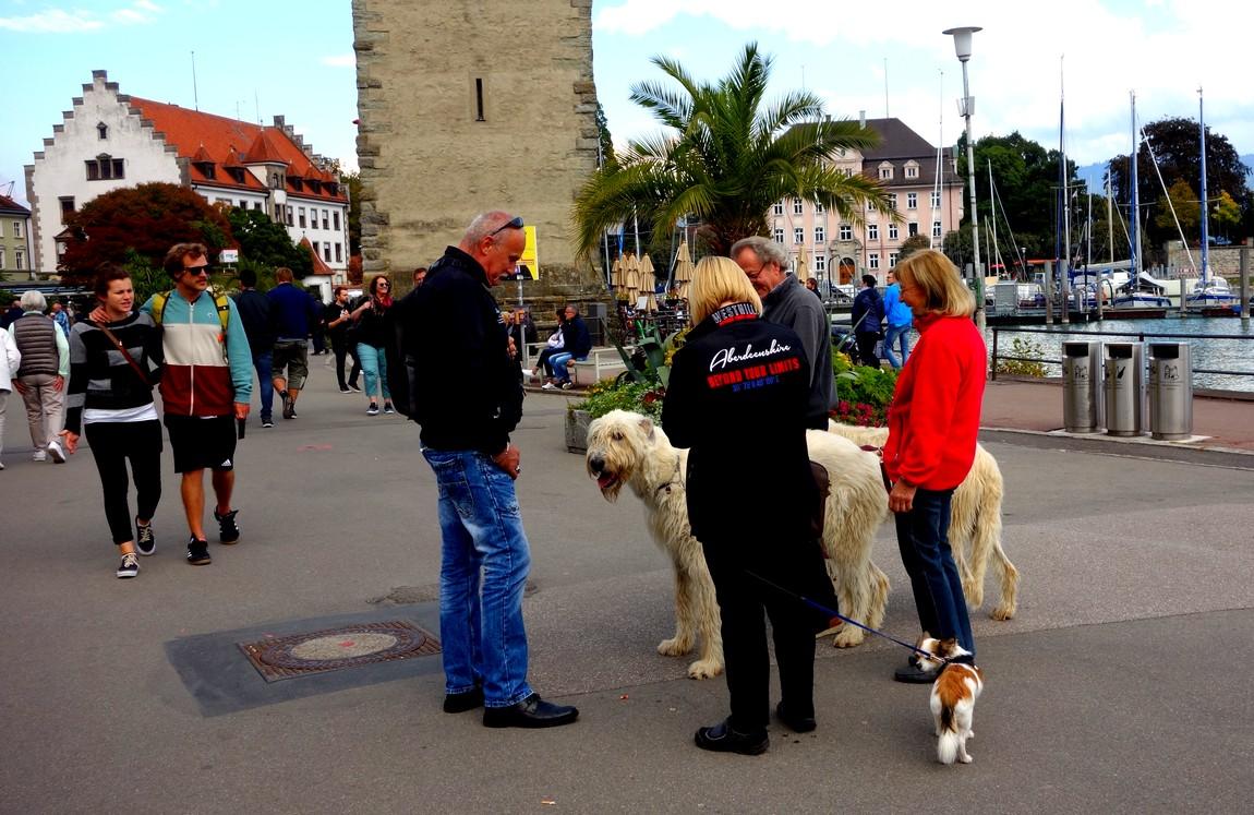 Набережная Линдау - любители собак