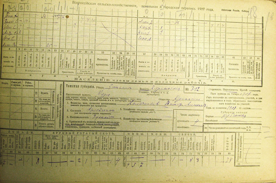Бланк переписи 1917 г