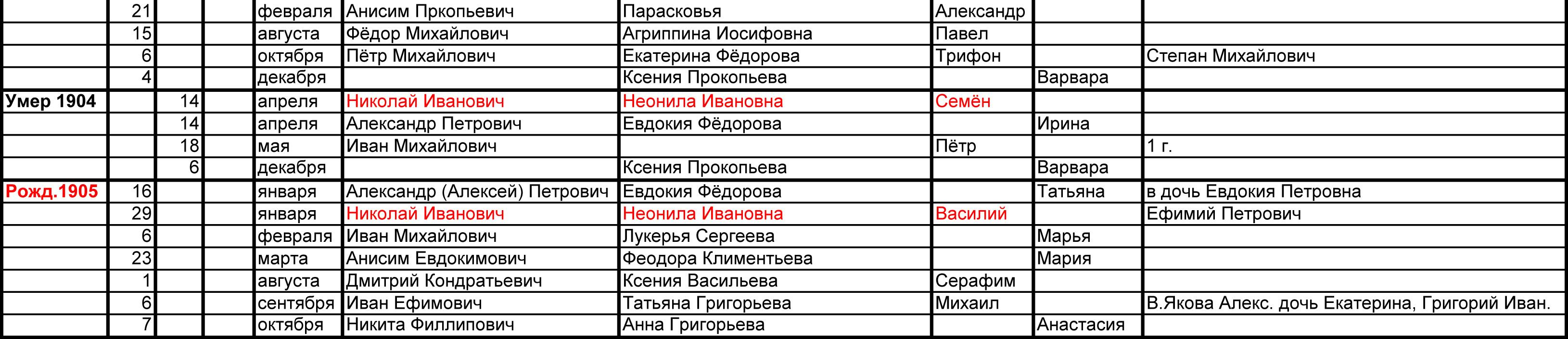 Метрический список Зверевых д. Щёкотово 1904-1905
