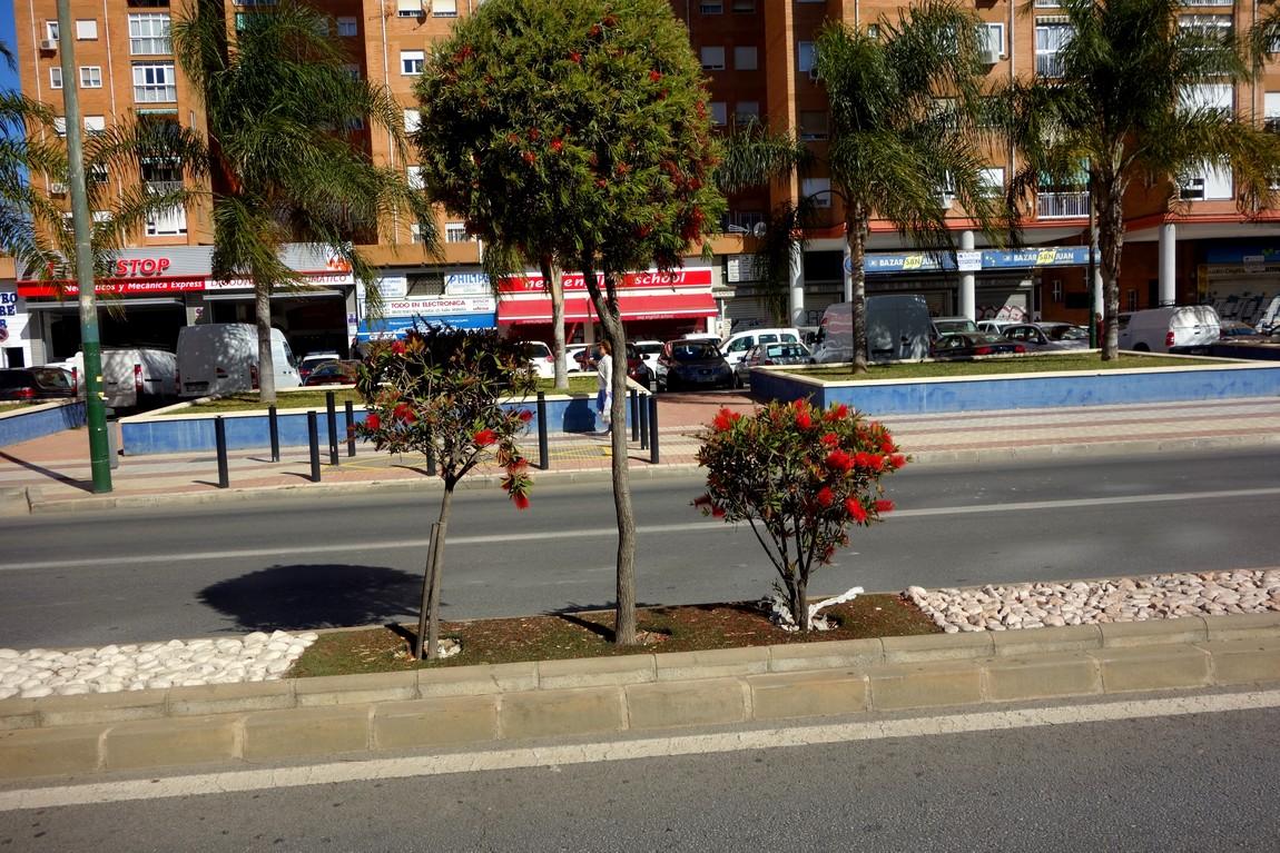 Улицы Малаги