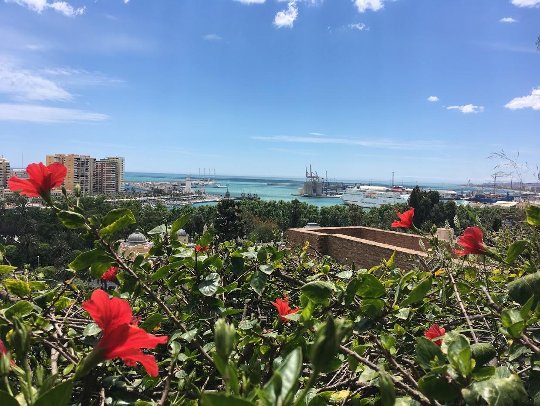 Альмерийская крепость Алькасаба - вид на город